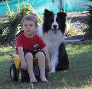 CODY AND HIS BEST FRIEND