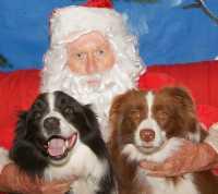 Mischka & Max with Santapaws